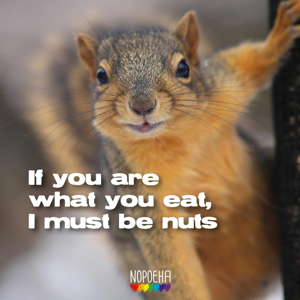 I must be nuts