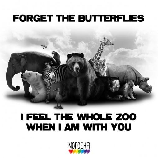 forget butterflies