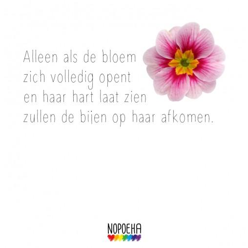 alleen als de bloem zich volledig opent