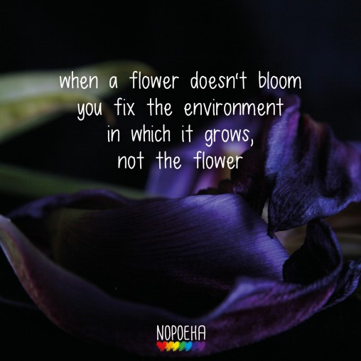when a flower doesn't bloom